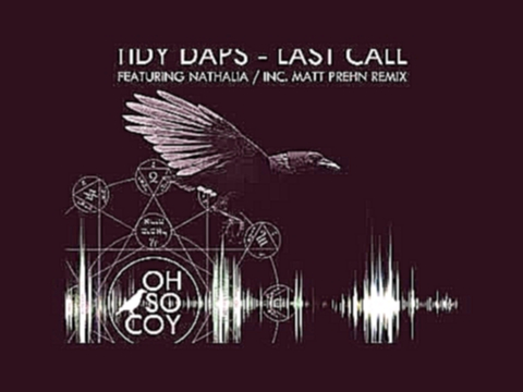Видеоклип на песню Last Call (feat. Nathalia) [Vocal Dub] - Tidy Daps Ft. Nathalia - Tidy Daps Feat. Nathalia - Last Call (Vocal Dub)