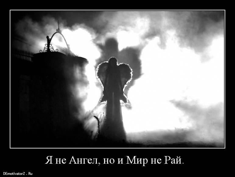Картинки с надписями я не ангел, фда картинка ромашки