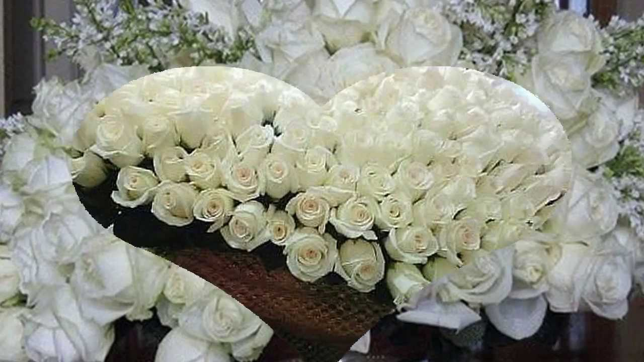 выезжающим миллионы белых роз картинки занятия другими